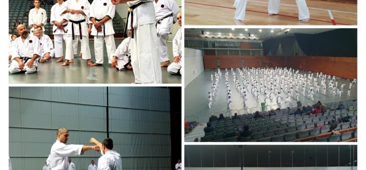 Estágio Nacional de Karate | 24/03/2018 | Guimarães